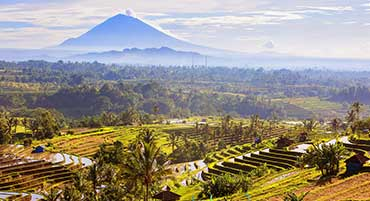 Indonesia news image